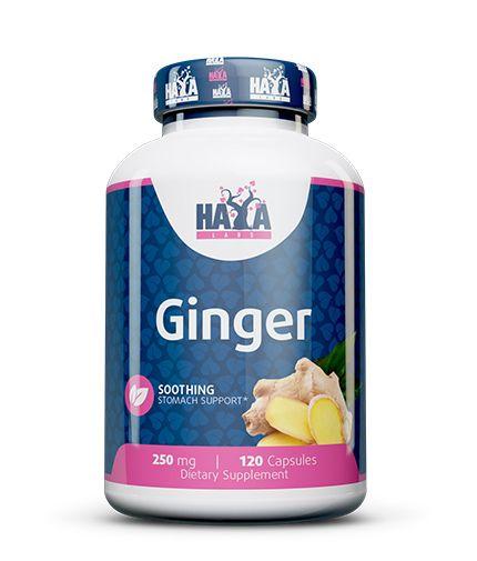 Haya-Labs-Ginger-Imbieras